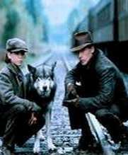 No Image for THE JOURNEY OF NATTY GANN